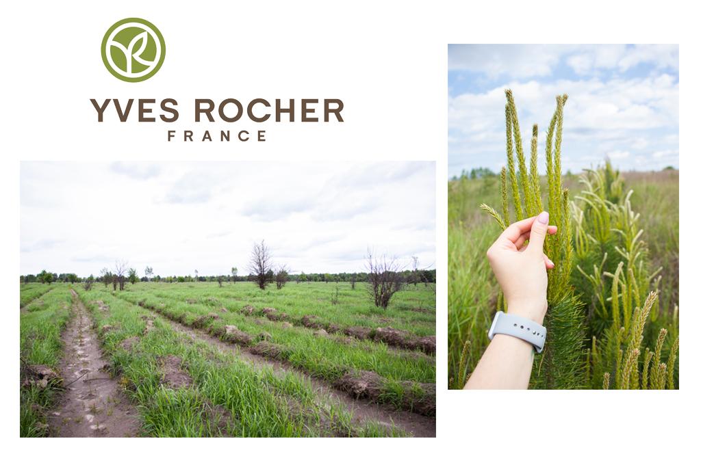 Фонд Yves Rocher в 2020 году высадил 100.000 деревьев